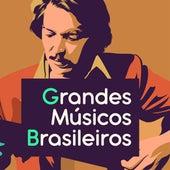 Grandes Músicos Brasileiros de Various Artists