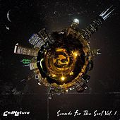 Sounds for the Soul, Vol. 1 by 2nd Nature