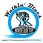 Walkin' Blues - 15 Years from Mountain Top Productions de Various Artists