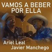 Vamos a Beber por Ella de Javier Manchego