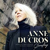 Something de Anne Ducros