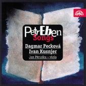 Eben: Songs von Various Artists