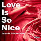 Love Is So Nice (Songs for Valentine's Day) by Various Artists