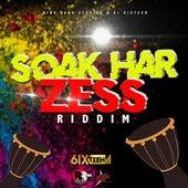 Soak Har Zess Riddim by Various Artists