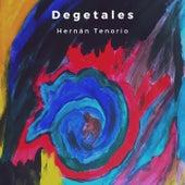 Degetales de Hernán Tenorio