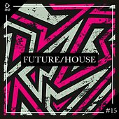 Future/House #15 by Various Artists