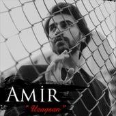 Uzaqsan de Amir