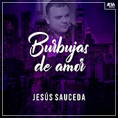 Burbujas de Amor van Jesús Sauceda