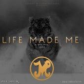 Life Made Me by Ali Sheik