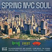 Spring NYC Soul de Various Artists