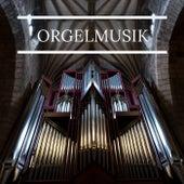 Orgelmusik de Various Artists