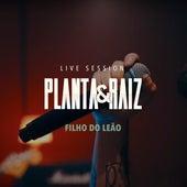 Filho do Leão (Live Session) von Planta E Raiz