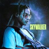 Skywalker (#TalentOKLM) de Luv Resval