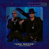 Una Noche (Unplugged) de Rauw Alejandro