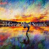 73 Great Mind Sounds von Massage Tribe