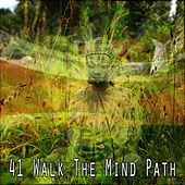 41 Walk the Mind Path by Deep Sleep Meditation