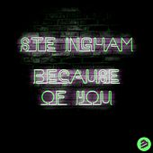 Because of You Remixes de Ste Ingham