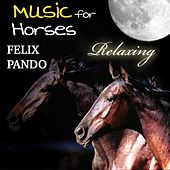 Music for Horses - Relaxing by Felix Pando