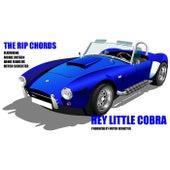 Hey Little Cobra de The Rip Chords
