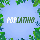 Pop Latino von Various Artists