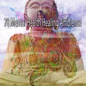 78 Mental Health Healing Ambience de Meditation Zen Master