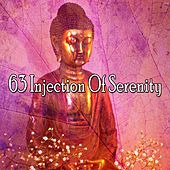 63 Injection of Serenity von Massage Therapy Music