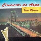 Concierto de Arpa by Javier Montoya