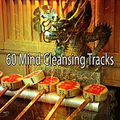 60 Mind Cleansing Tracks von Study Concentration