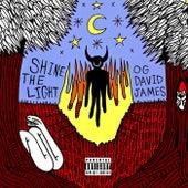 SHINE THE LIGHT von OG David James