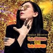 Take You Home de Sussan Deyhim
