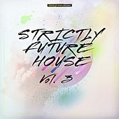 Strictly Future House, Vol. 3 de Various Artists
