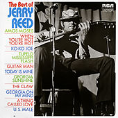 The Best of Jerry Reed de Jerry Reed