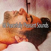 66 Peacefully Pleasant Sounds von Rockabye Lullaby
