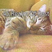 45 Realm of Rest by Baby Sleep Sleep