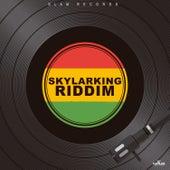 Skylarking Riddim de Various Artists
