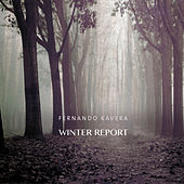 Winter Report de Fernando Kavera