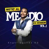 Metio Al Medio en Dembow, Vol. 1 de Various Artists