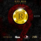 R9 Riddim de Various Artists