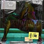 DanceHall Music de Various Artists