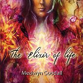 The Elixir of Life de Medwyn Goodall