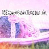 58 Resolved Insomnia de Sounds Of Nature