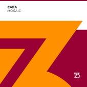 Mosaic de CaPa