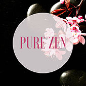 Pure Zen: Zen Story Telling Background Music von Various Artists