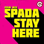 Stay Here (10am Mix) by Spada