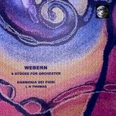 Webern 6 Stücke für Orchester by L. H. Thomas