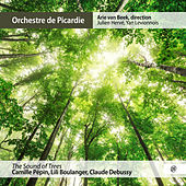 The Sound of Trees by Orchestre de Picardie