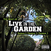 The Best of Live in the Garden de Mendo Dope