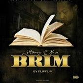 Story of a Brim by Flip Flip