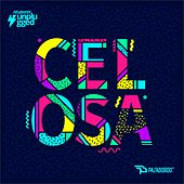 Celosa (Unplugged) by Pasabordo
