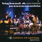 Bigband & Jazz Ensemble: Colors of Spring de Various Artists